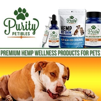 Pure Hemp CBD Products for Pets