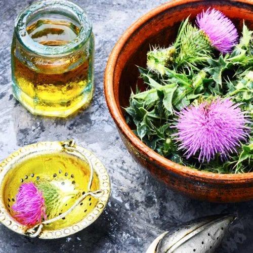 buy natural healing medicinal products online